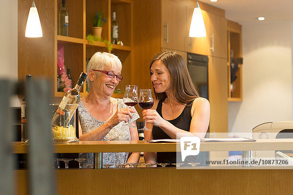 Women at counter in wine bar making a toast