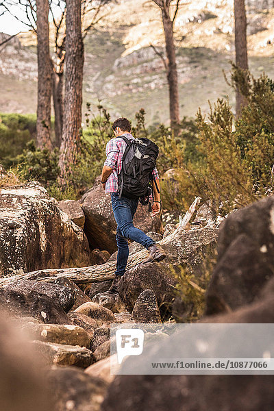 Male hiker hiking down forest rock formation  Deer Park  Cape Town  South Africa