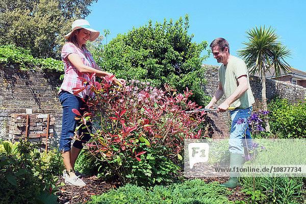 Paar  das sich um den Garten kümmert