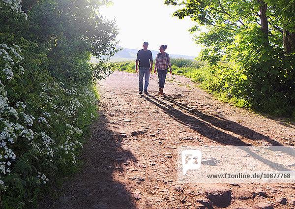Rückansicht eines auf Feldwegen gehenden Paares