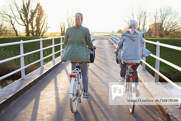 Rear view of women cycling bicycles on bridge across river