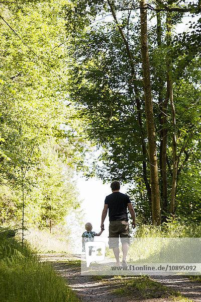 Schweden  Bohuslan  Vater und Tochter (2-3) beim Waldspaziergang