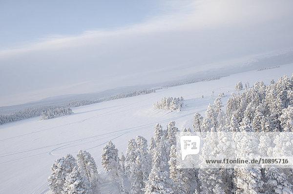 Schweden  Lappland  Jokkmokk  Luftaufnahme von Wald und zugefrorenem See im Winter