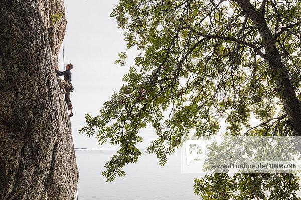 Schweden  Medelpad  Sundsvall  Mittlerer Erwachsener Mann klettert Klippe