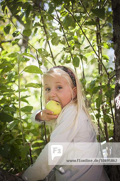 Schweden  Medelpad  Portrait eines blonden Mädchens (4-5) beim Apfelessen
