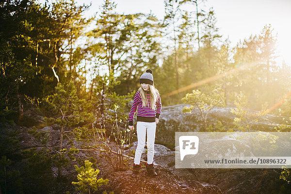 Schweden  Medelpad  Sundsvall  Juniskar  Portrait eines Mädchens (10-11) im Wald stehend an einem sonnigen Tag