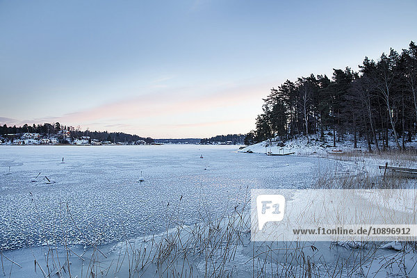 Schweden  Uppland  Stockholm Archipel  Rindo  Sonnenuntergang am Meer