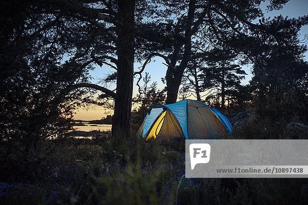 Schweden  Smaland  Tjust-Archipel  Vastervik  Hasselo  Zelt im Wald bei Sonnenuntergang