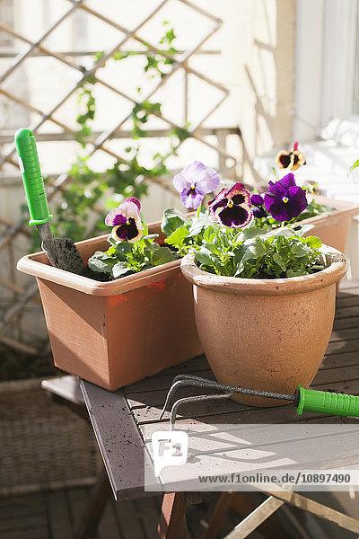 Schweden,  Gartengeräte auf kleinem Tisch