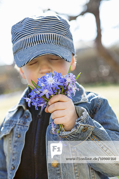 Sweden  Sodermanland  Boy (6-7) smelling flowers