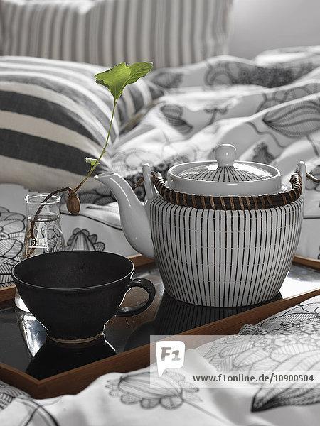 Schweden  Vastergotland  Teekanne und Tasse auf Tablett