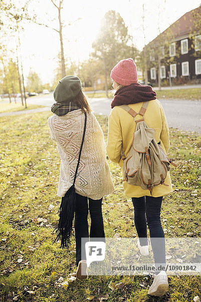 Sweden,  Vasterbotten,  Umea,  Rear view of two young women walking