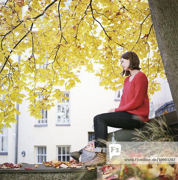 Finnland  Helsinki  Kallio  Frau unter Ahorn sitzend
