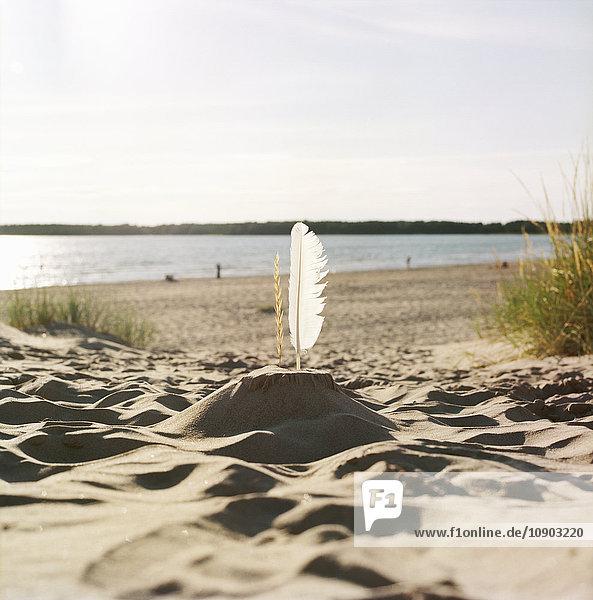 Finnland  Pori  Yyteri  Sandburg mit Feder am Sandstrand