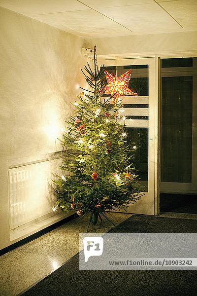 Finnland  Uusimaa  Weihnachtsbaum im Korridor
