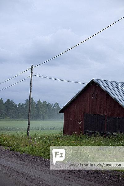 Finnland  Ita-Uusimaa  Lapinjarvi  Scheune in der Wiese am nebligen Tag