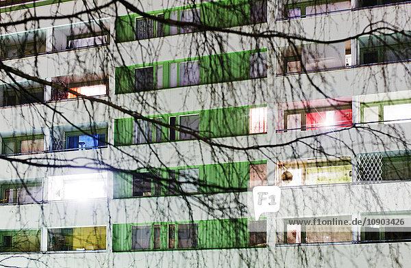 Finnland  Lahti  Ansicht der Fassade mit Birken im Vordergrund