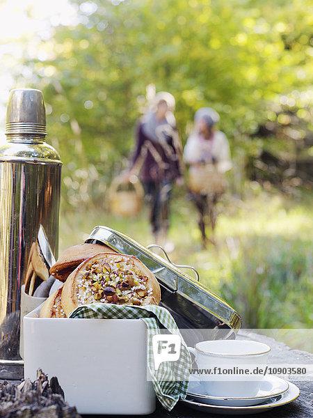 Sweden  Skane  Close-up of picnic food