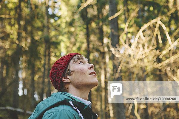 Finnland  Esbo  Kvarntrask  Porträt eines jungen Mannes im Wald  Blick nach oben