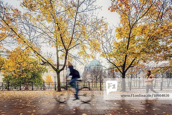 Deutschland  Berlin  Park am Regentag