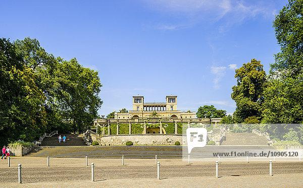 Deutschland  Brandenburg  Potsdam  Schloss Sanssouci  Parktreppe am leuchtenden Tag