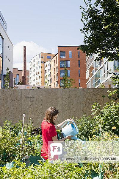 Finnland  Helsinki  Sornainen  Frau bewässert Blumen im Garten bei Wohnhäusern