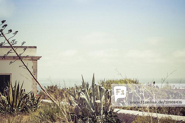 Spanien  Formentera  La Mola  Blick von Far de la Mola auf die Küste