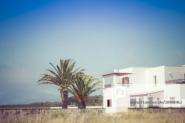 Spanien  Formentera  Finca