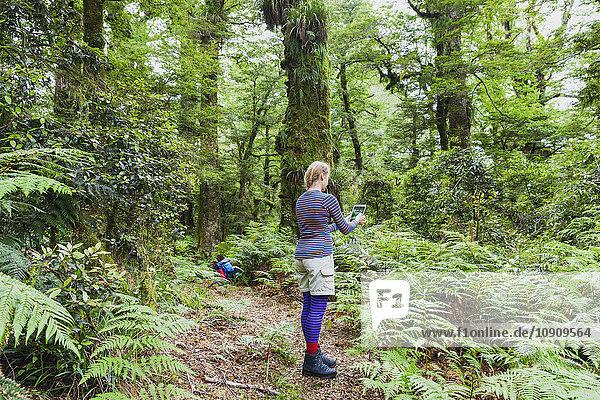Neuseeland  Nordinsel  Te Urewera Nationalpark  Frau  Wanderer auf dem Trail fotografieren mit Tablette