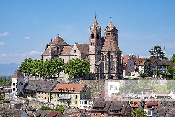 Deutschland  Baden-Württemberg  Breisach  Altstadt  Blick auf das Münster Breisach