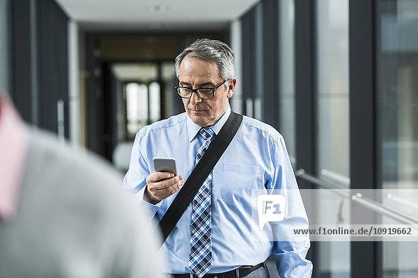 Senior Geschäftsmann auf der Suche nach Handy