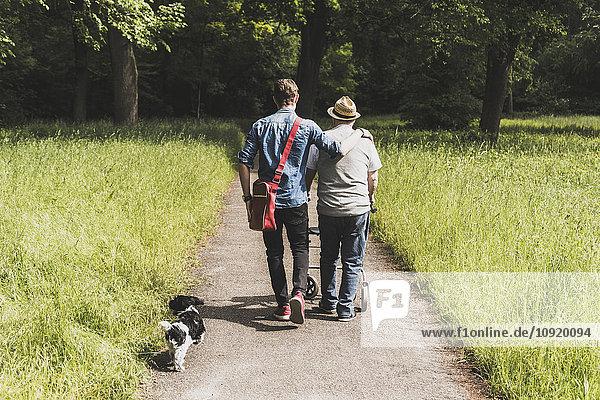 Rückansicht des Großvaters beim Spaziergang mit Enkel und Hund in der Natur