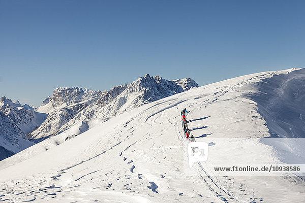 Group of ski tourers walking in Sexten Dolomites