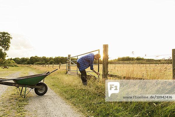 Mann untersucht Tor auf grasbewachsenem Feld gegen klaren Himmel auf dem Bauernhof