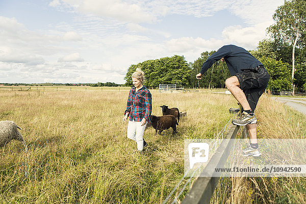 Man jumping over fence while female farmer walking with sheep at farm