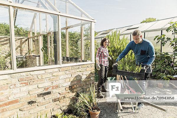 Mann beim Verladen von Pflanzenkisten in Schubkarren bei der Gartenarbeit mit Frau