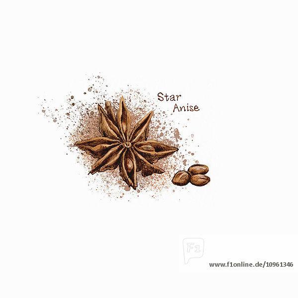 Sternanis mit Samen