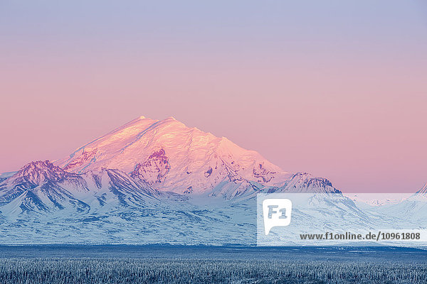 Scenic view of Mt. Drum at sunset  Southcentral Alaska  Winter