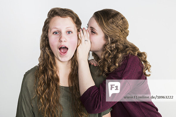 'Studio shot of one friend telling a secret to another friend  on a white background; Alberta  Canada'