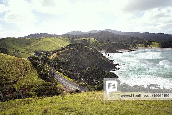 'Road on a mountainous seaside; North Island  New Zealand'