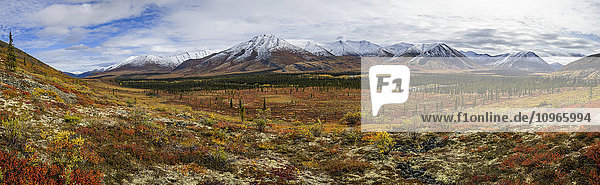 'Panoramic view of the Ogilvie Mountains along the Dempster Highway; Yukon  Canada'