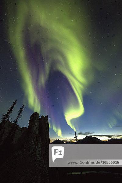 'Northern Lights (aurora borealis); Yukon  Canada'