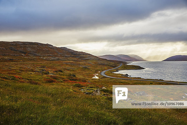 'A road leads in the distance amongst the autumn colors in Iceland Westfjords; Iceland'