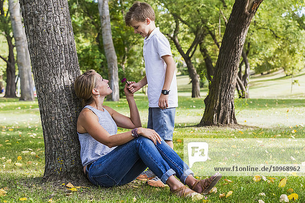 'Mother getting a flower from her son while spending quality time at a park during a family outing; Edmonton  Alberta  Canada'
