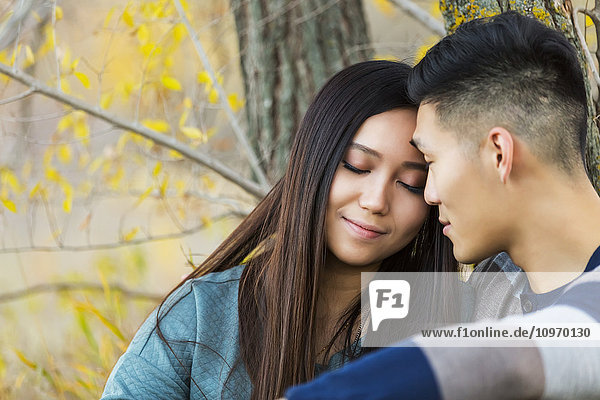 'A young Asian couple enjoying a romantic time together and sitting down under a tree in a park in autumn; Edmonton  Alberta  Canada'