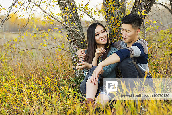 'A young Asian couple enjoying quality time together outdoors in a park in autumn and sitting down under a tree as she is tickling his nose with a blade of grass; Edmonton  Alberta  Canada'