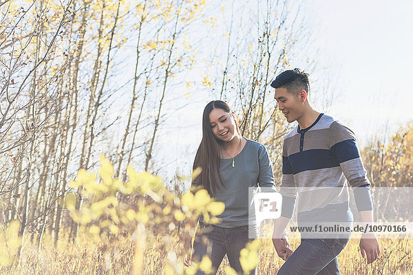 'A young Asian couple holding hands while walking through a park in autumn and enjoying the warmth of the sunlight during the early evening; Edmonton  Alberta  Canada'