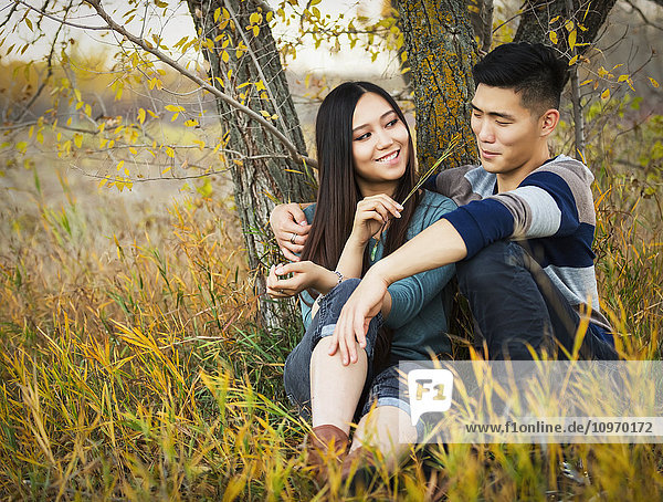 'A young Asian couple enjoying a romantic time together and sitting under a tree in a park in autumn and she is tickling his nose with a blade of grass; Edmonton  Alberta  Canada'