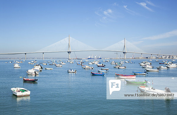 'Boats moored in a tranquil harbour; Cadiz de la Frontera  Andalusia  Spain'