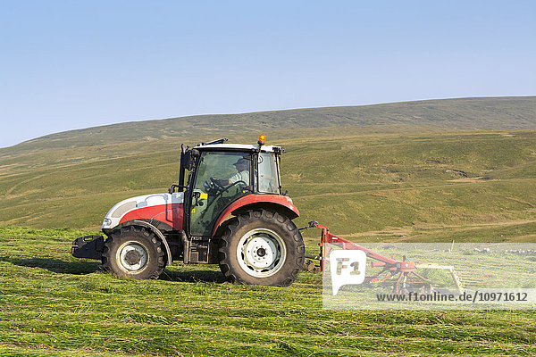 Hill farmer spreading grass in hay meadow  with Steyr tractor  to dry out and make hay; Cumbria  England
